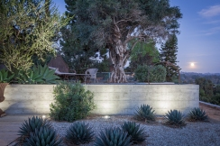 Shot at moonrise, this raised, gravel-paved patio is one of several private spaces built to create intimacy around the more expansive poolside areas. Board formed cast in place concrete retaining walls surround gardens planted with agaves and dwarf olives. LED landscape lighting is minimal, meant to mimic moonlight rather than create an artificial sun